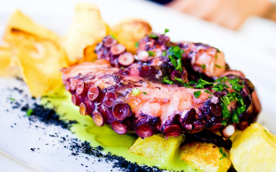 Octopus – an ideal ingredient of ingenious food enthusiasts